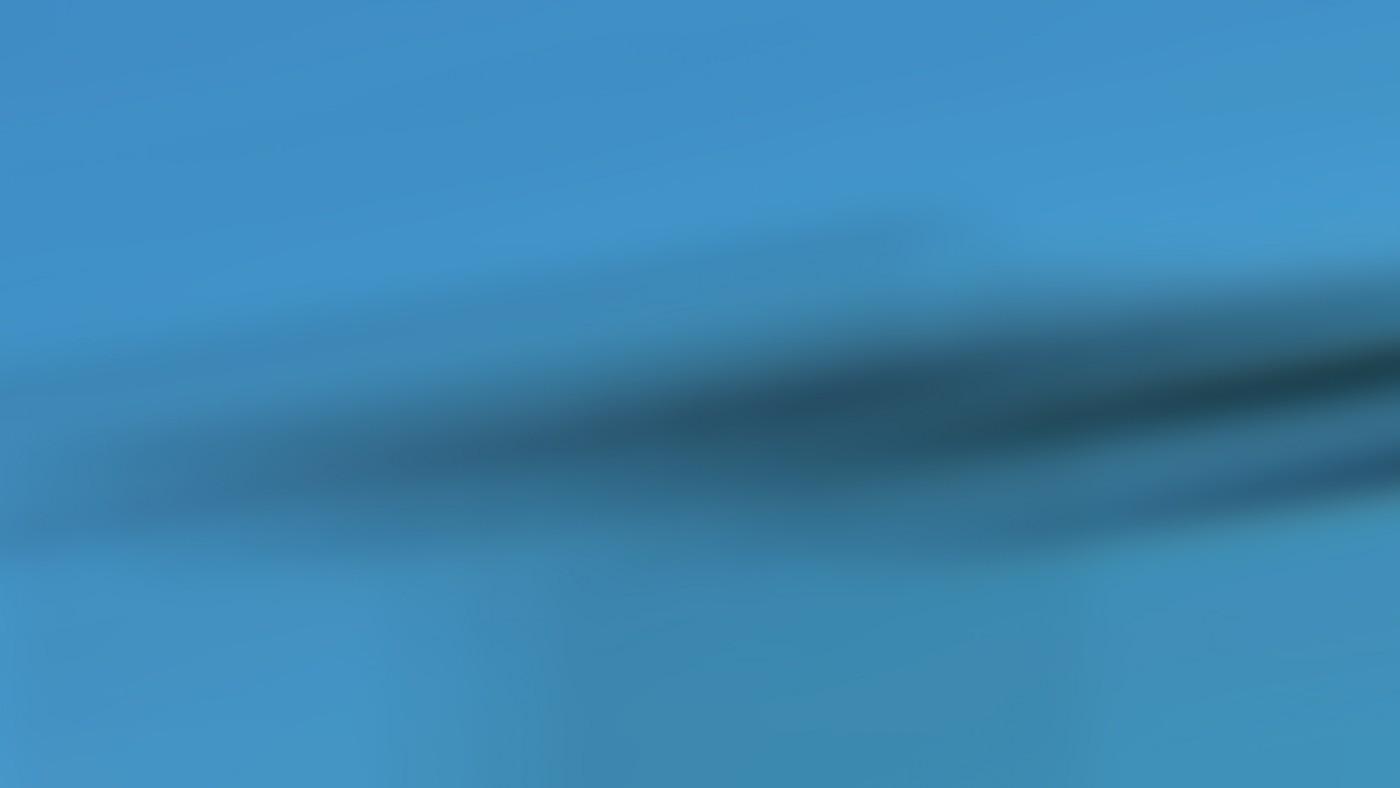 Nexus Animations